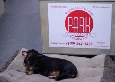 ParkElevators_Details&Dogs-42